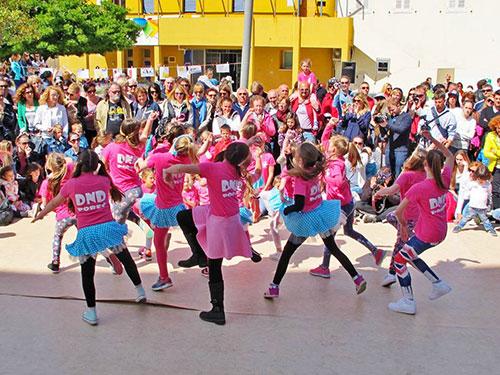 programi_dan_plesa